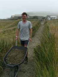Volunteer with gravel in a wheelbarrow.
